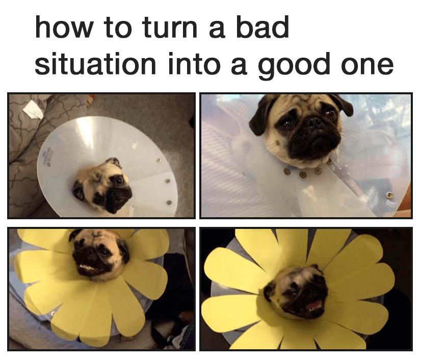 How to turn a bad situation into a good one