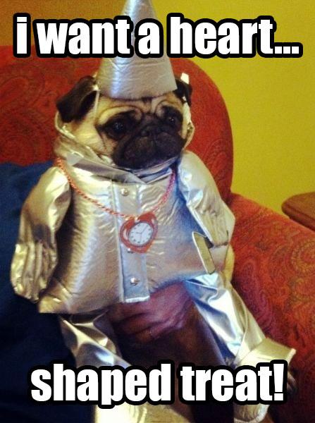tin woodsman pug costume - Pugs Halloween Costumes